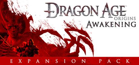 Dragon Age Retrospective 3: Awakenings of the Witch hunter